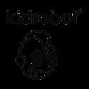 תמונה עבור יצרן KIDROBOT