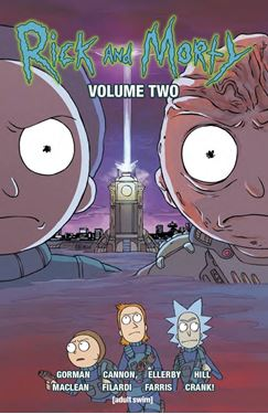 תמונה של RICK & MORTY TP VOL 02