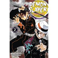 תמונה של DEMON SLAYER VOL 2