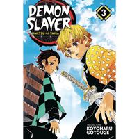 תמונה של DEMON SLAYER VOL 3