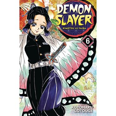 תמונה של DEMON SLAYER VOL 6