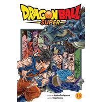 תמונה של DRAGON BALL SUPER VOL 13